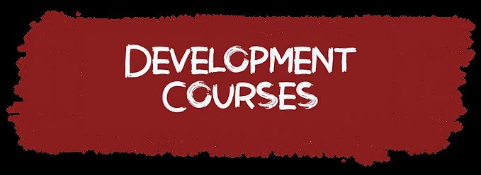 development course.png