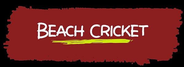Beach Cricket titel.png