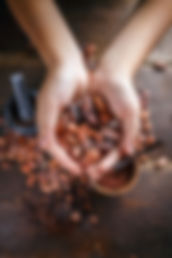 bigstock-Hand-Holds-Cocoa-Beans-20247546