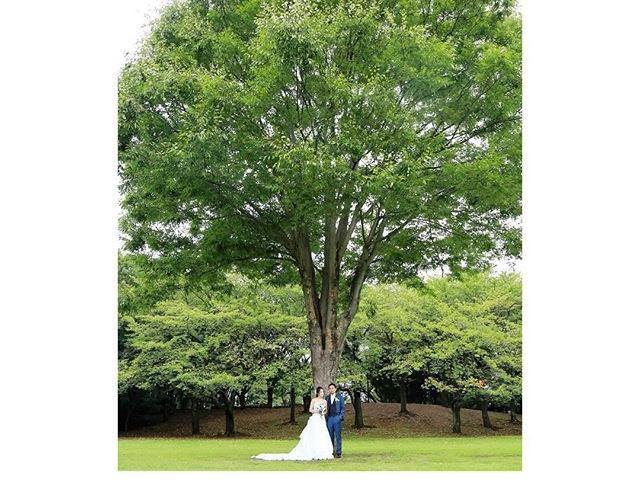 ._うちももぉすぐ結婚記念日だ❤️_._結婚して5年。_._あっと言う間の5年だったなぁ〜_._まだまだヒヨッコ夫婦だけど、_歳を重ねる毎に_厚みのある大木のような_どっしりとした2人になりた