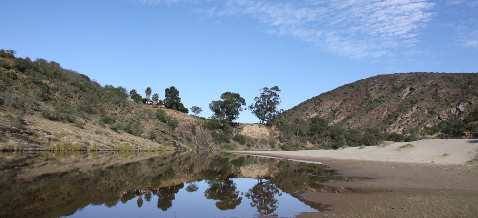 View - Riverbed