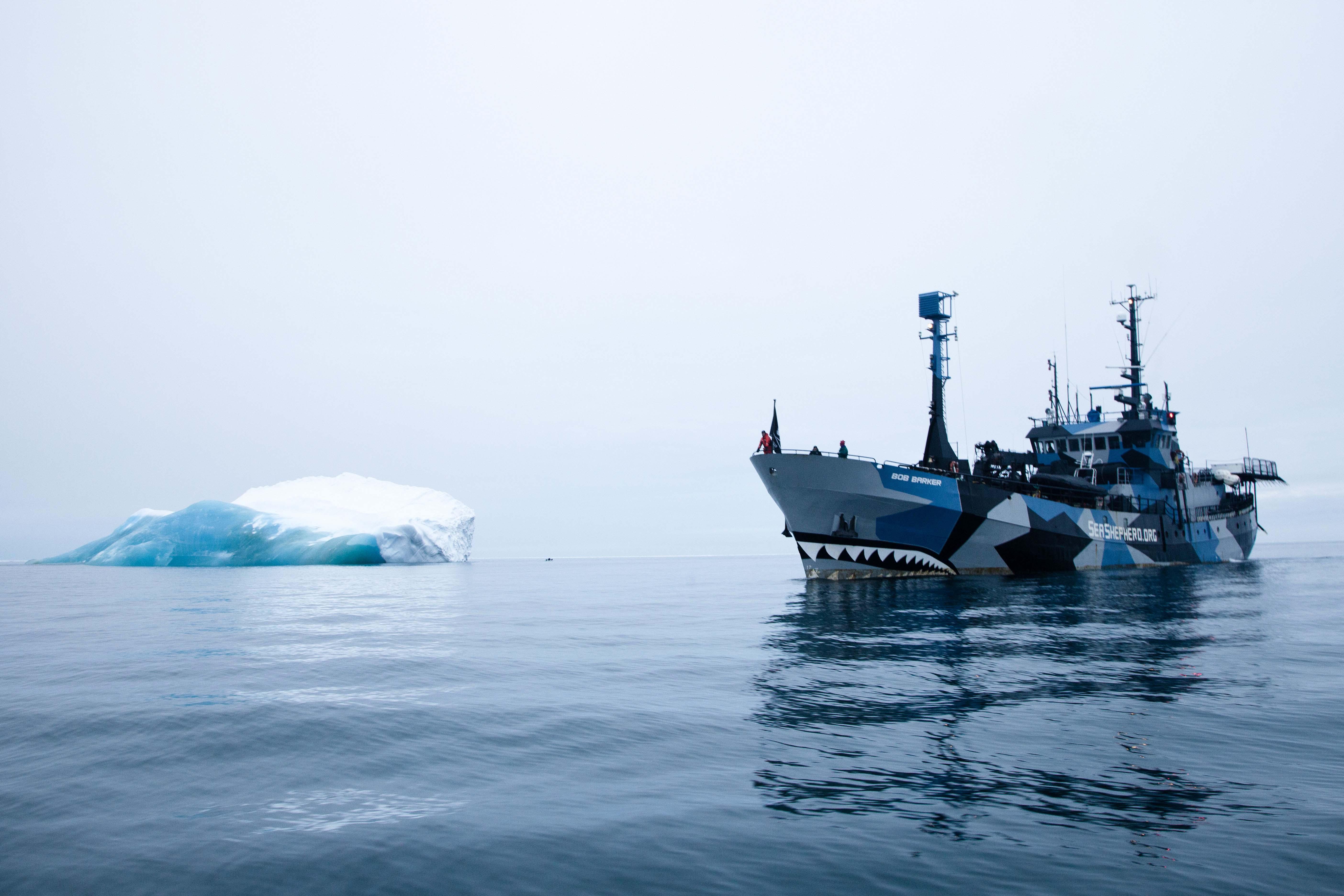 130115-TW-08-Bob-Barker-Iceberg-08
