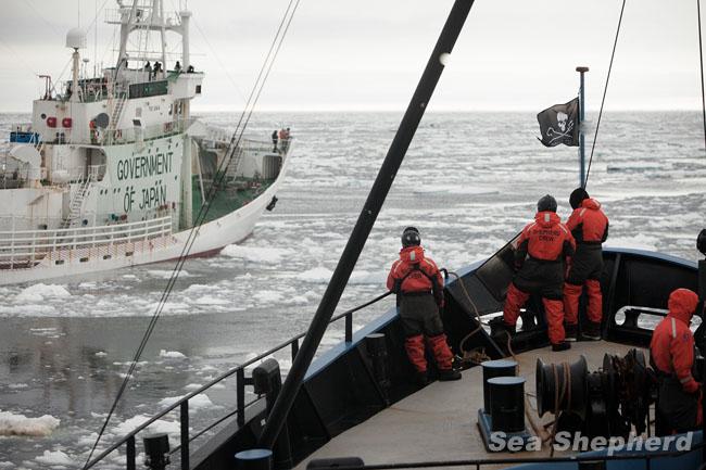 news-131222-1-TW-SI-Shonan-Maru-OZT-0020