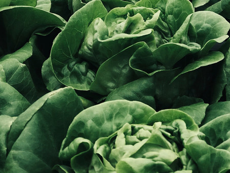 Liberty Produce and Partners win Innovate UK grant to revolutionise Vertical Farming