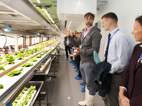 Press Release: Innovation Hub for Controlled Environment Agriculture launched in Dundee