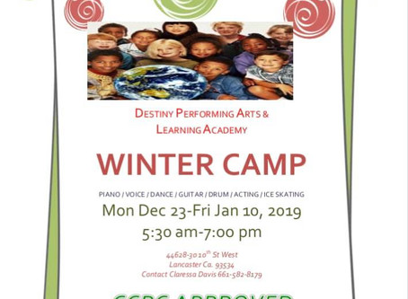 DPALA Winter Camp 2019!