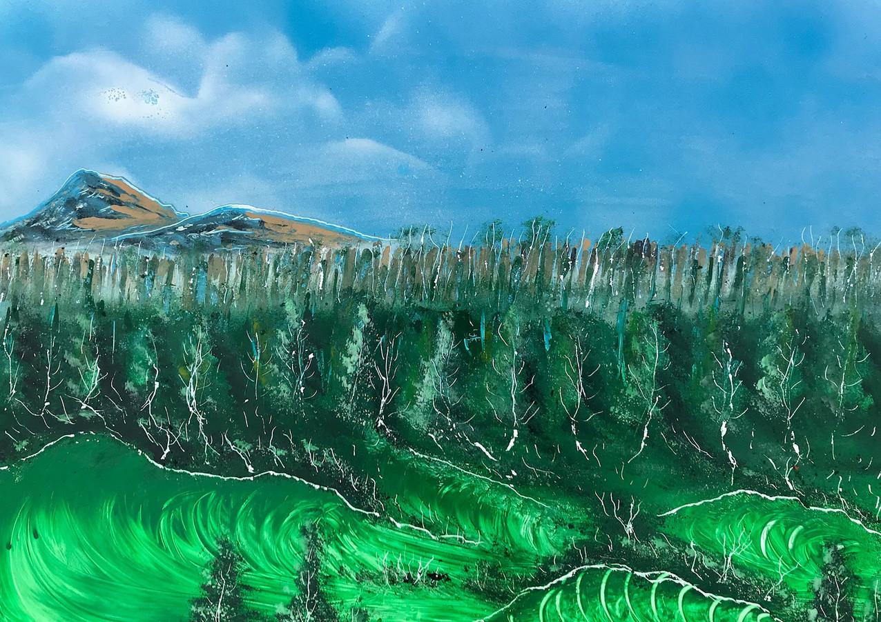 "Wild Sea of Pines (Day 7) Spray Paint on Panel 16 x 20"" 2017"