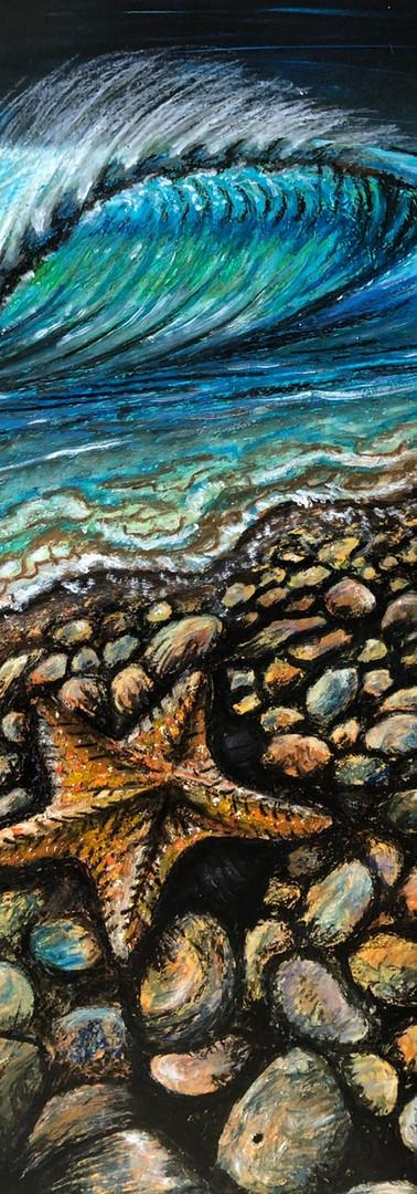 cobblestone-trevor-coopersmith-starfish-