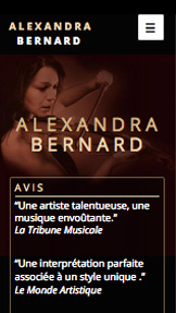 Artistes Solo website templates – Musicienne