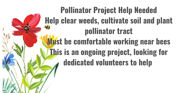 Pollinator Project Help2.png