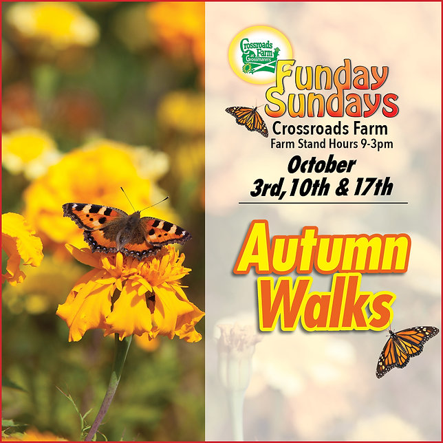 Fall Walks '21.jpg