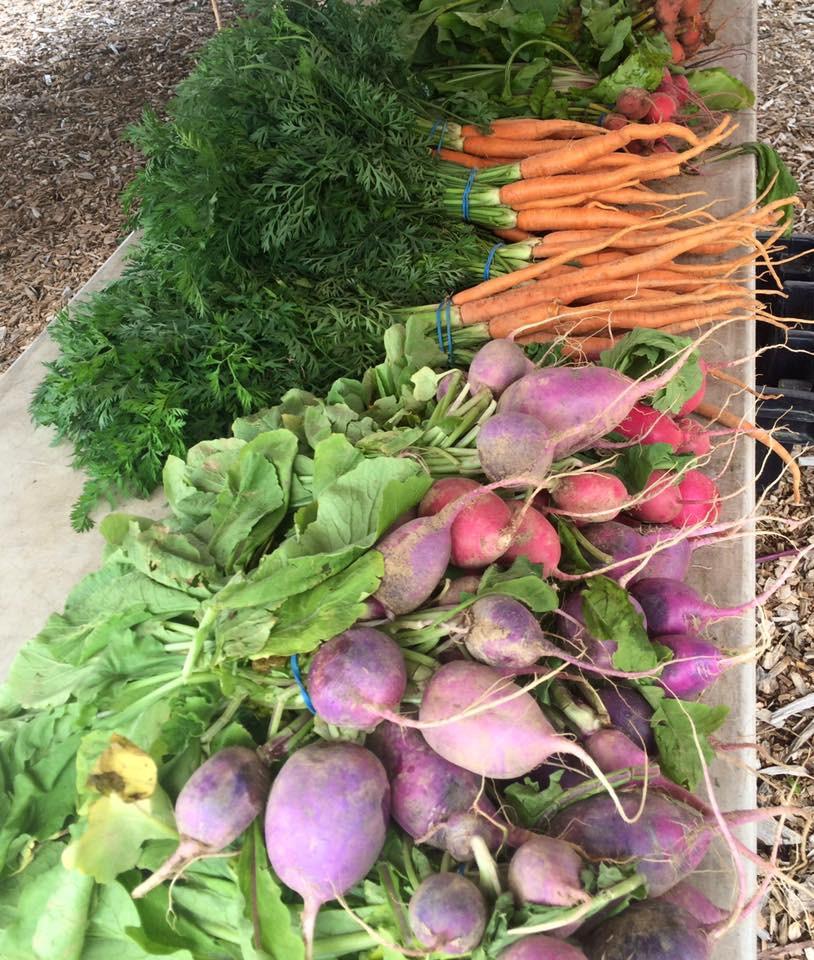 farmers_market_produce.jpg