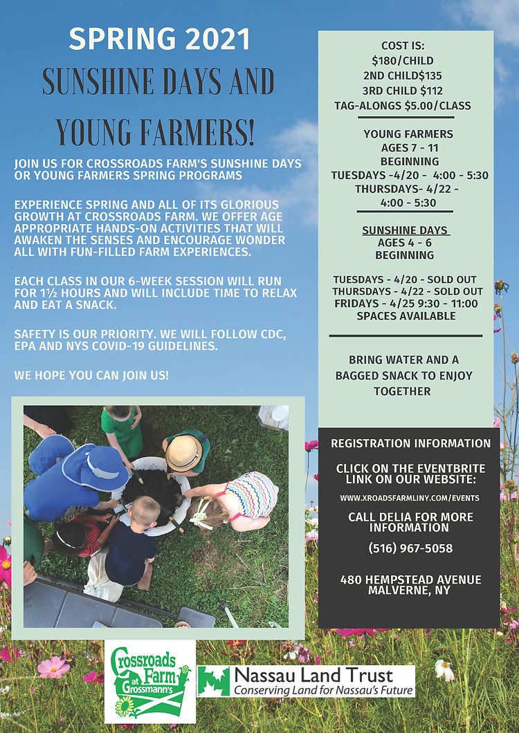 Spring 2021 Sunshine Days and Young Farm
