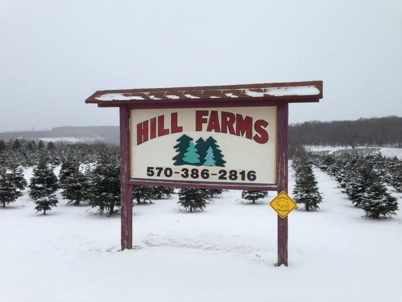 Hill Farms.jpg