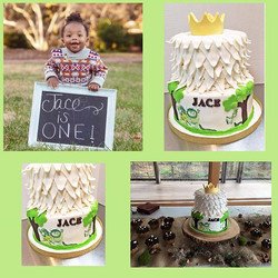 It was such an honor to do this _Where the Wild things Are _ Cake for my little cousin Jace💕💕💕 ca