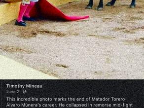 Bullfighting Must End (draft)