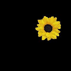 GMM Logo _ Bigger Flower (1).png