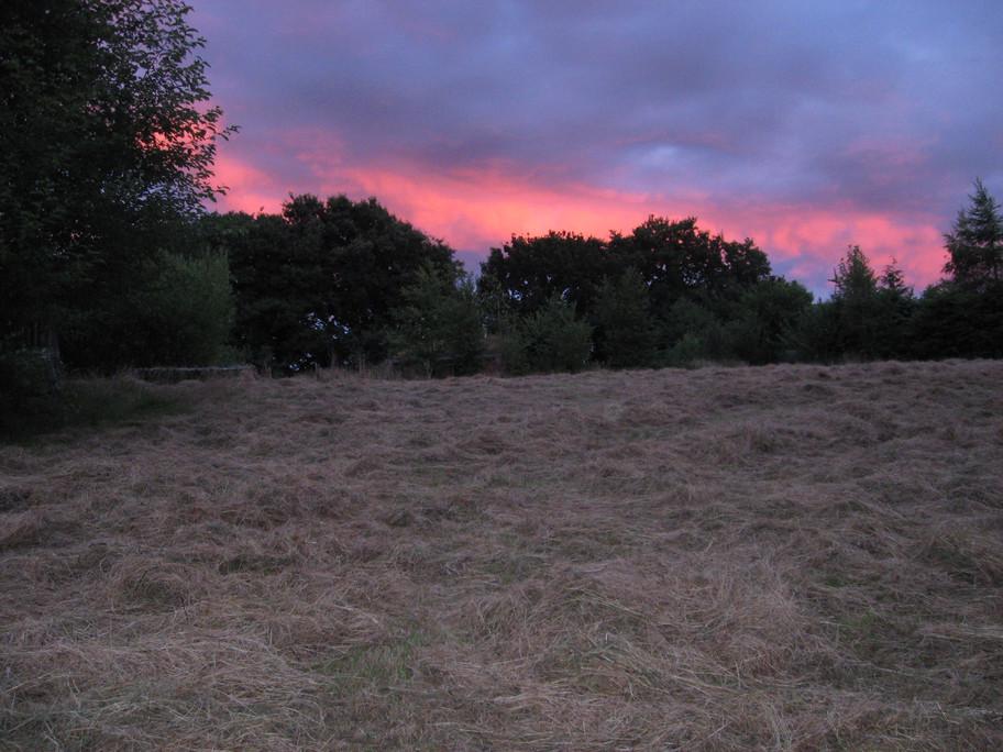 hay at sunset.jpg