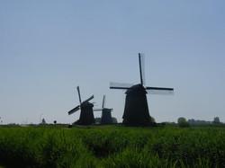 טיול אחרי קורונה, הולנד