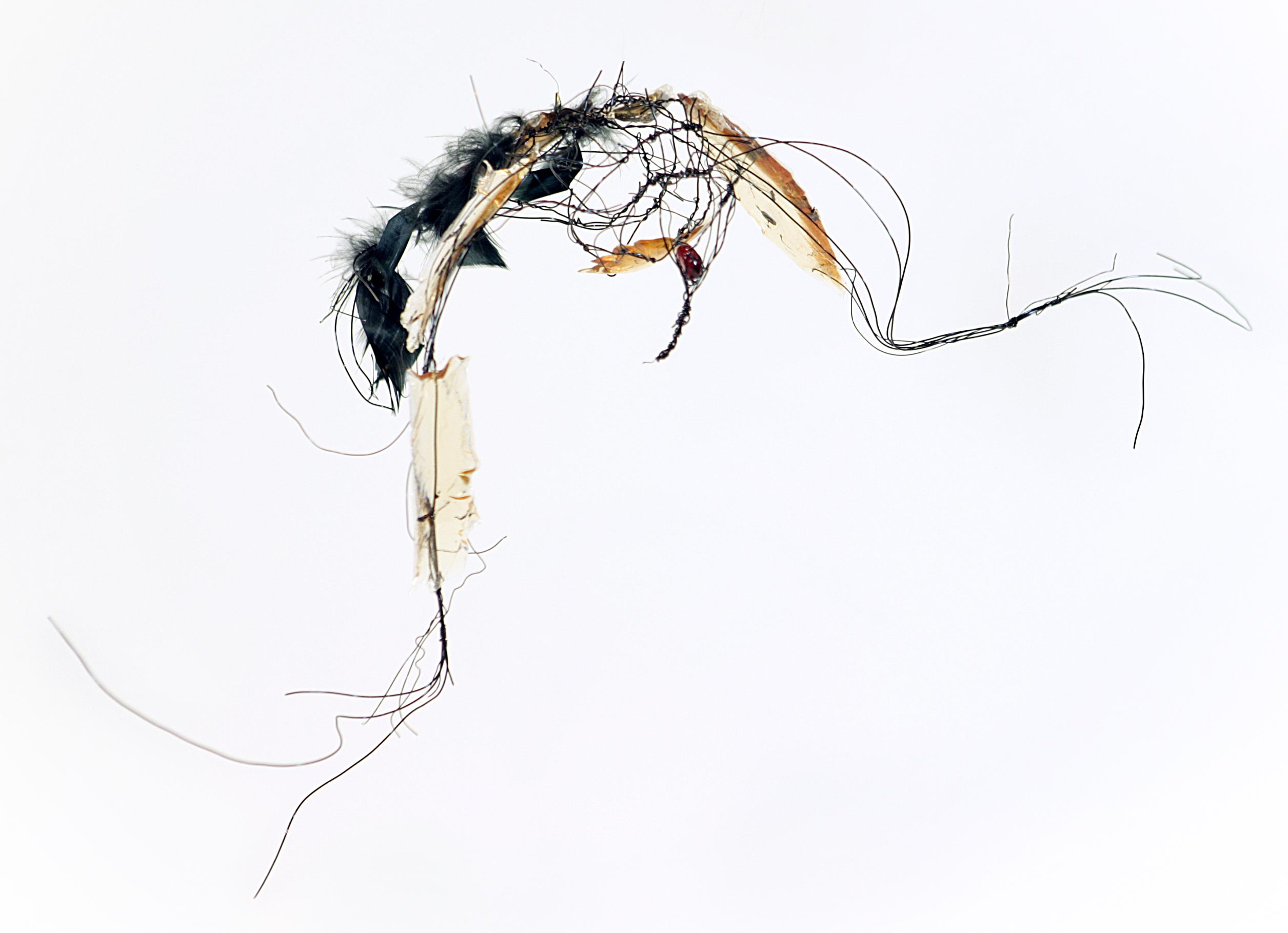 Birds, 2015 [sold]