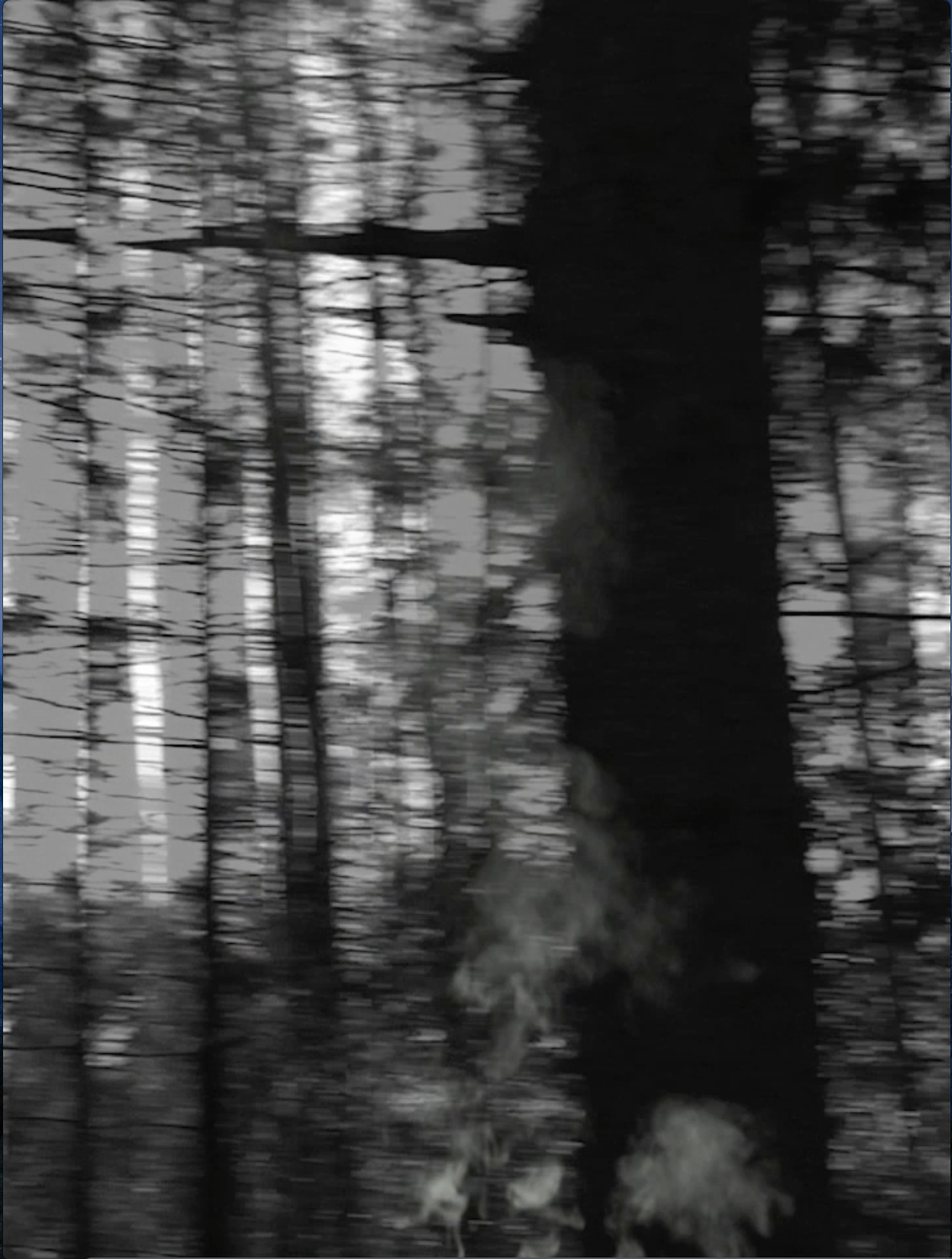 Video Screenshot #2