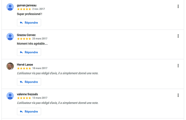 commentaire google3.PNG