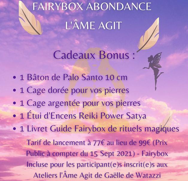 Copie de BOX ABONDANCE L'ÂME AGIT.mp4
