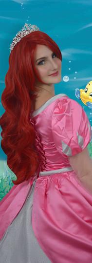 AA E&E Ariel