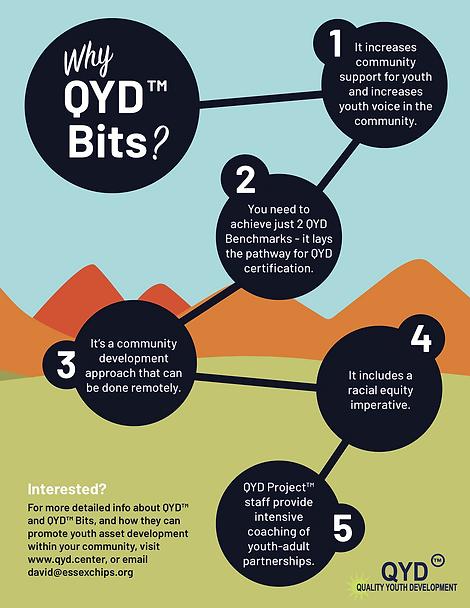 QYD Bits Promo.png