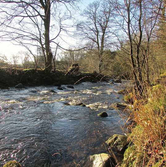 river-path_12437767295_o.jpg