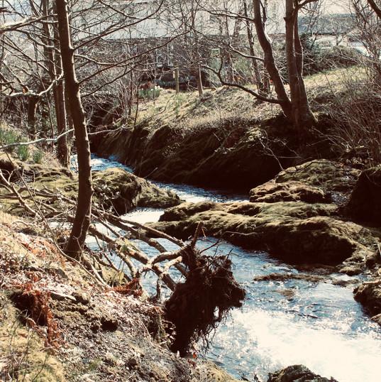 flowing-stream_18870004028_o.jpg