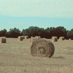 french-hay-bales_22501227910_o.jpg