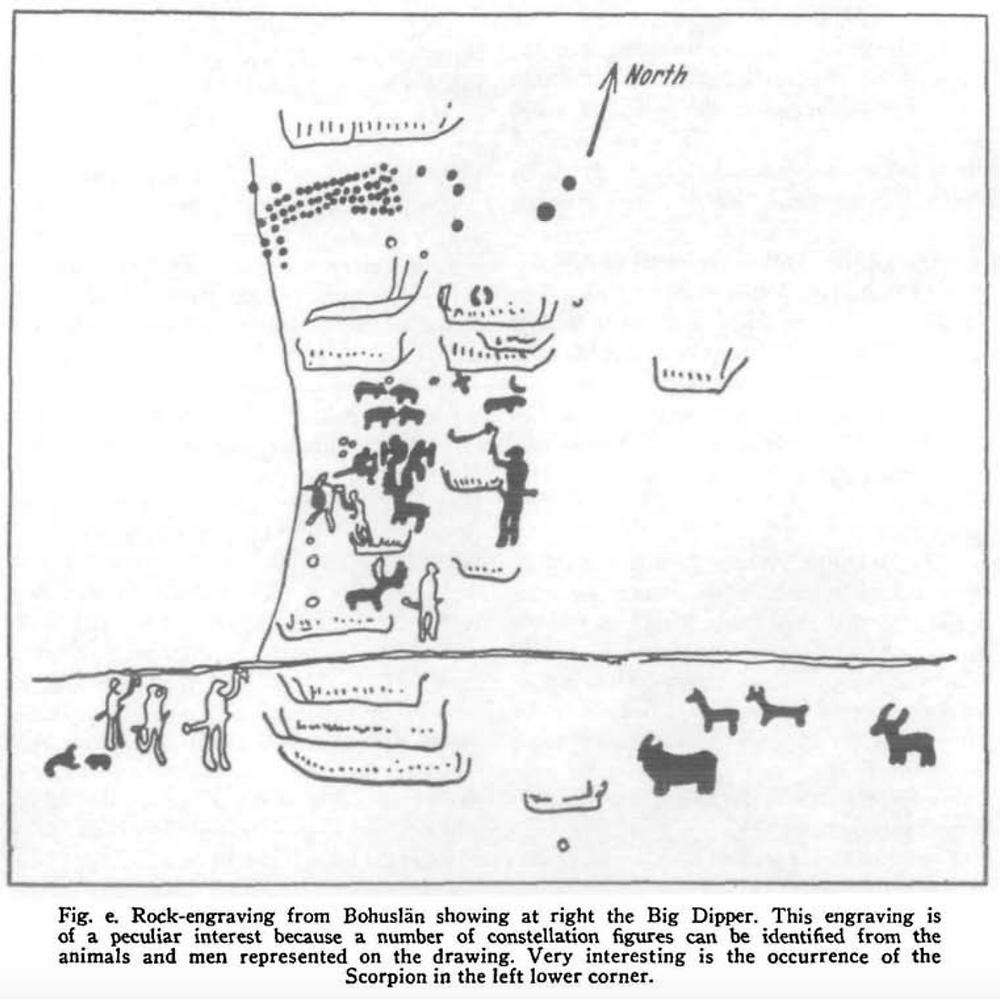 Figure 1 – Bohuslän Stellar Depiction specimen (Makemson, 1954, p163-171)
