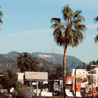 its-hollywood_16908230145_o.jpg