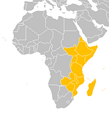 Astronism in East Africa is the presence of the Astronist religion in various countries along the eastern coast of the continent of Africa, as part of the worldwide Astronist Institution.
