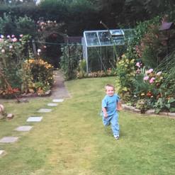 Cometan Running In The Garden of Brookla