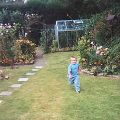 Cometan Running In The Garden of Brookla