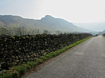 Lonely Lane