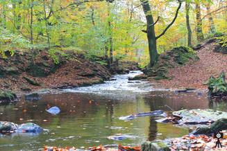 A Glance Upriver