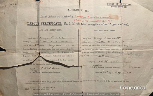 Birth Certificate of Mary Warbrick (née Prescott)