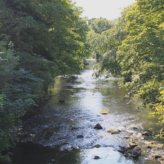 sunlit-river_15034340262_o.jpg