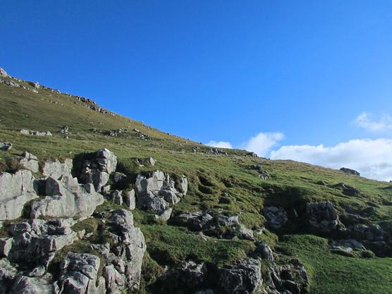 hillside-view_12594551523_o.jpg