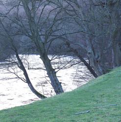 the-great-river-dee_16548887371_o.jpg