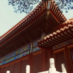 ornamented-roof-of-the-forbidden-city_41