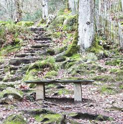 bench--steps_16572199901_o.jpg