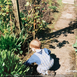 Cometan Gardening.jpg