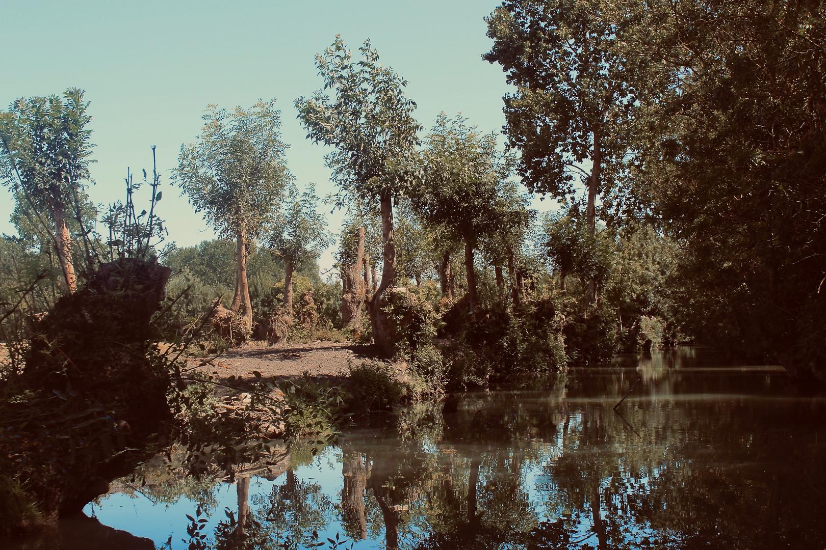 Relaxing River Ride