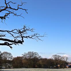 winter-morning_16069965934_o.jpg