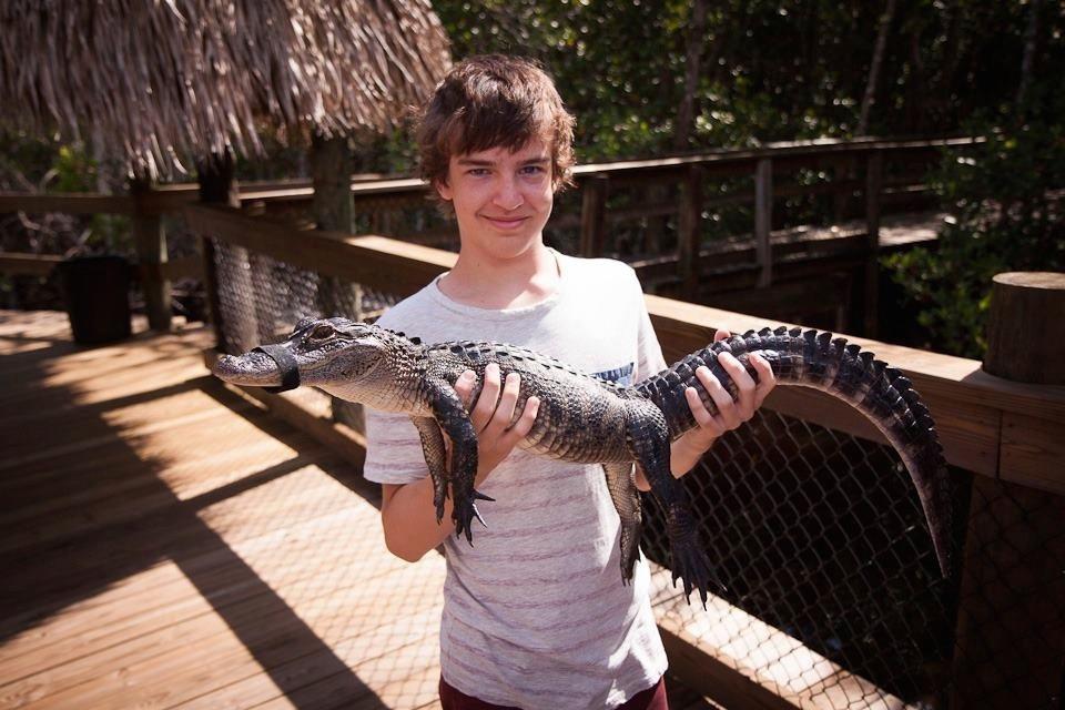 Cometan at the Everglades