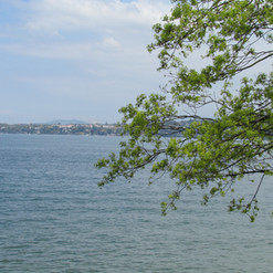 the-nature-of-lake-geneva_8703233398_o.j